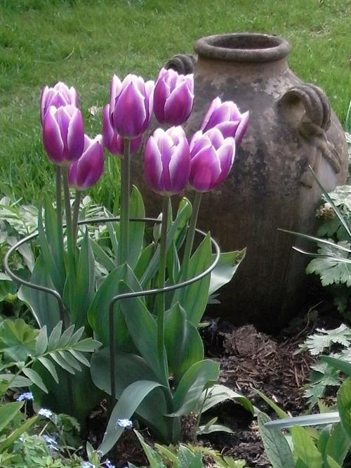 Permalink to Home Garden Garden